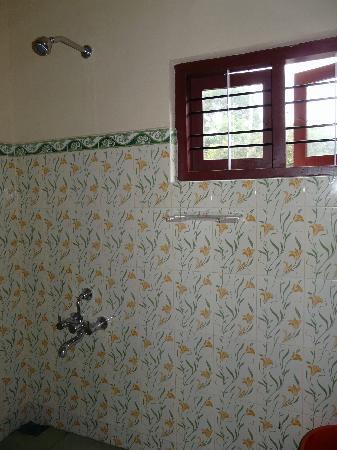 Thekkady Inn : shower room (1)