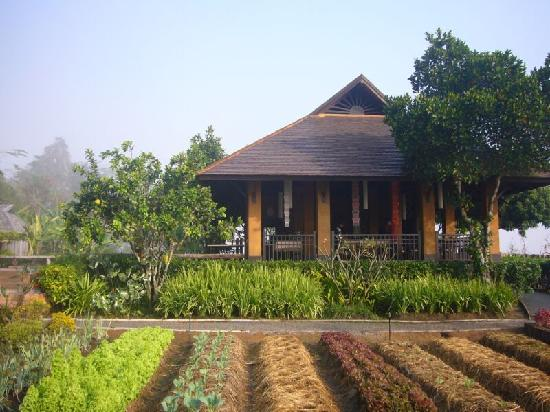Chiang Khong, Tailândia: Reception & Restaurant