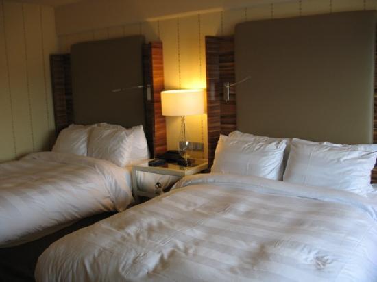 Sheraton Stockholm Hotel : Room