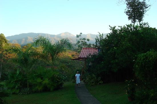 Blue Banyan Inn: walking up from the cabina to eat breakfast