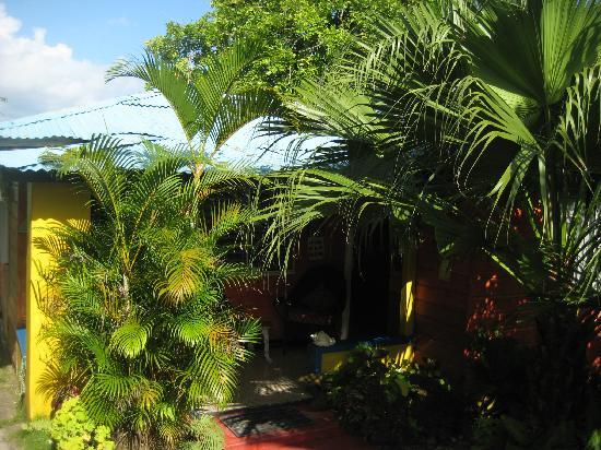 Mikuzi Port Antonio: the cabin with the kitchen