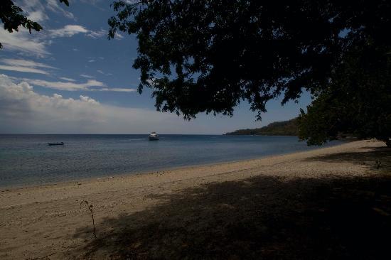 Amanwana: Moyo beach