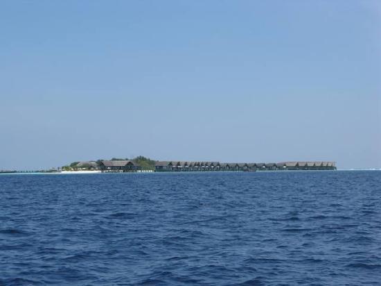 Cocoa Island by COMO: L'isola vista dal mare
