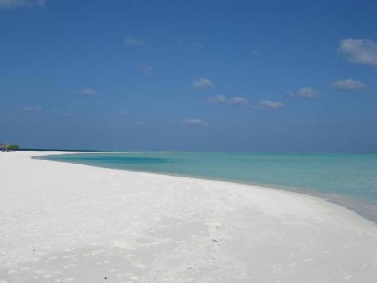 منتجع Cocoa Island by COMO: La spiaggia