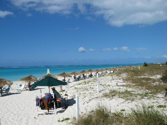 The Sands at Grace Bay: the beach