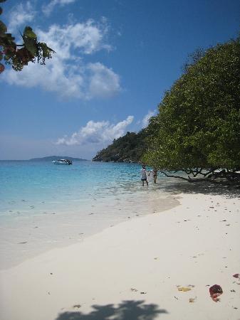 Khaolak Orchid Beach Resort: Similan Islands