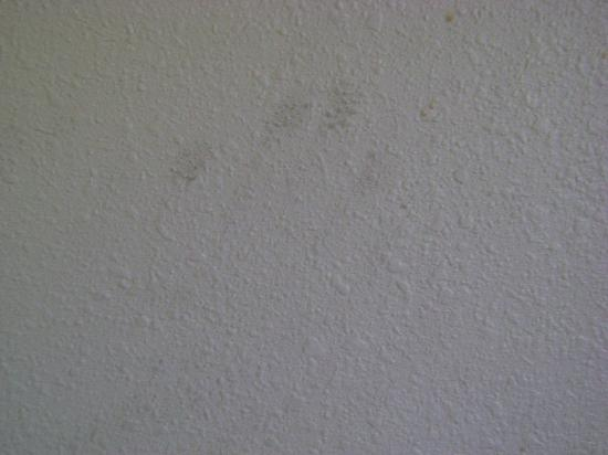 Super 8 Springfield/Battlefield : Hand print smear on the wall