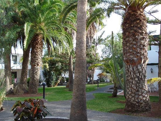 Apartamentos Barcarola Club: Hotel Grounds