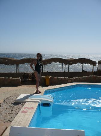 Dyarna Hotel: Dyarna Swimming pool and beach view