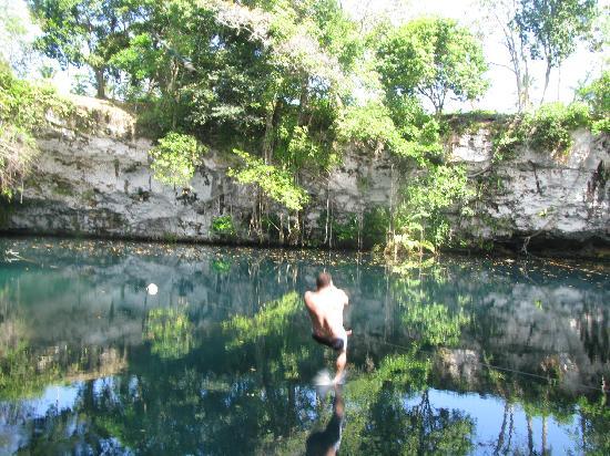 Excursion safari saut corde tarzan lagon photo de grand for Club piscine mascouche