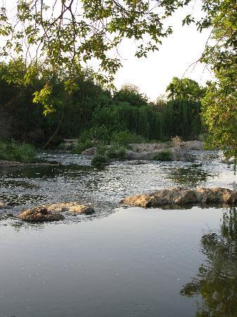 Ibis River Retreat: The river