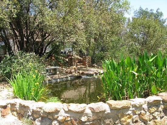 Ibis River Retreat: Pond in cottage garden