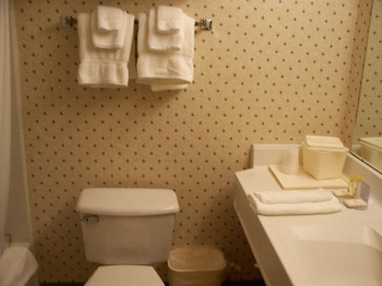 Quality Inn: Washroom