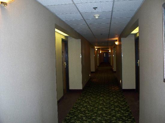 Quality Inn : Hallway