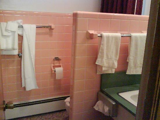 Days Inn Port Huron: Pink tiles in the bathroom.