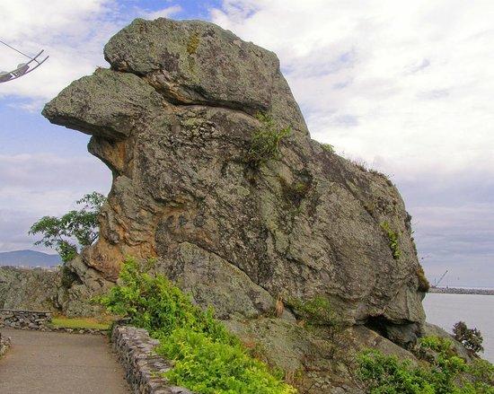 Brasil: Pico de Papagayo en Itajaí