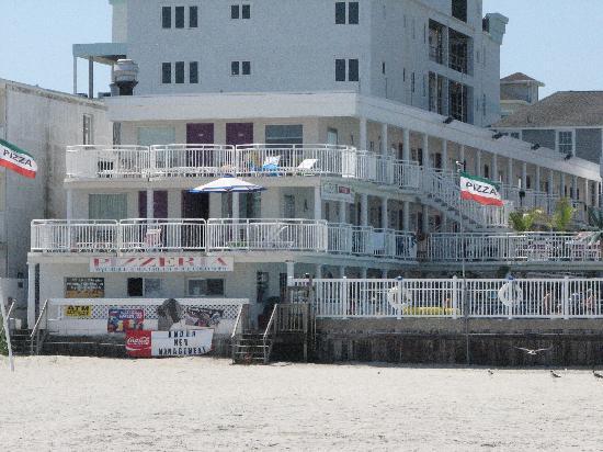 Coliseum Ocean Resort: view from beach of coliseum hotel