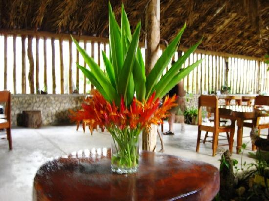 Orchid Garden Restaurant: A tropical setting