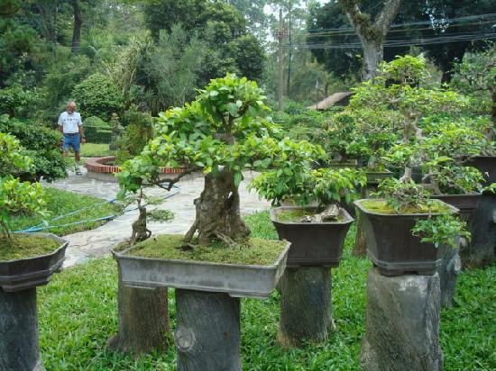 Blue River Hotel: Saigon Zoo