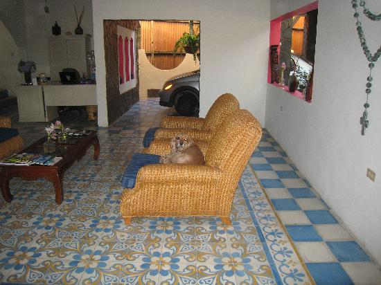La Islita Boutique Hotel: house dog takes a break from his rough life :]