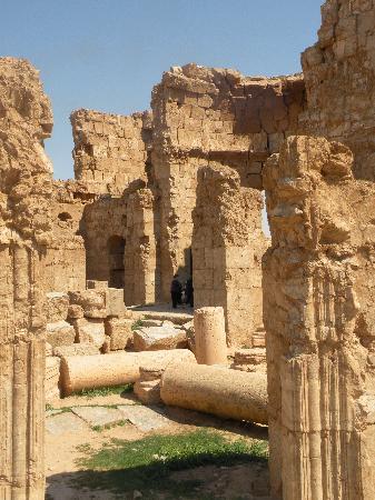 Συρία: Resafa (Sergiopoli)