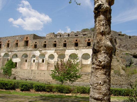 Vastours Naples - Pompeii Day Tour
