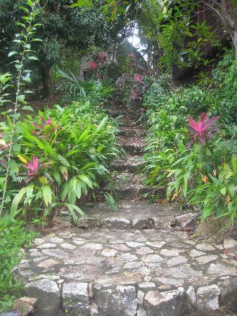 Sundancer Cabanas : Gorgeous Lush Gardens