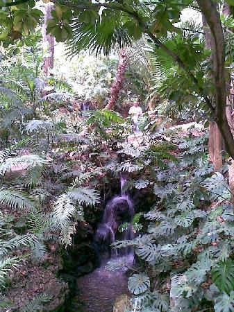 Jardin botanico picture of la concepcion jardin botanico for Bodas jardin botanico malaga