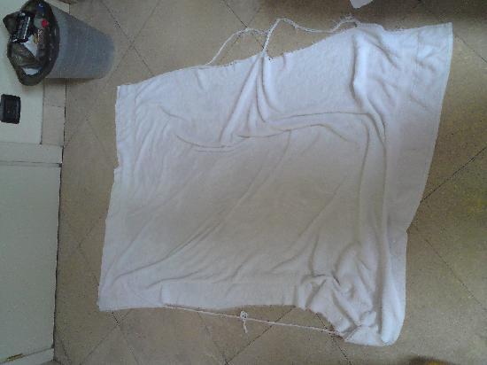 Hotel San Marco: Threadbare Towel