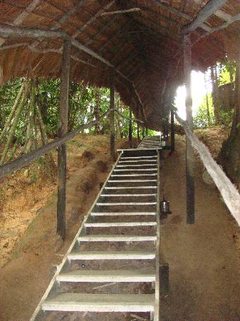 ExplorNapo Lodge: The steps up to the rooms