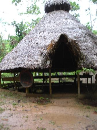 ExplorNapo Lodge: The Shaman Hut