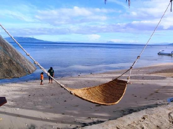 Coco Beach Resort: hammock by the beach