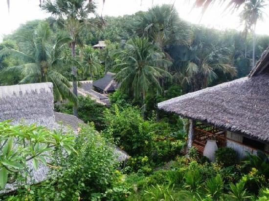 Coco Beach Island Resort: view from our room