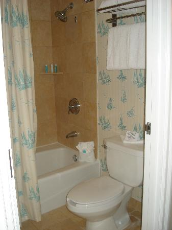 Disney  39 s Beach Club Resort  bathroom   toilet  amp  shower. bathroom   toilet  amp  shower   Picture of Disney  39 s Beach Club Resort