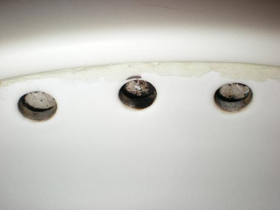 Mold Mildew In Bathroom In Bathroom Sink Drain Picture
