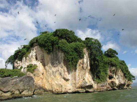 Haitises national park: Bird island
