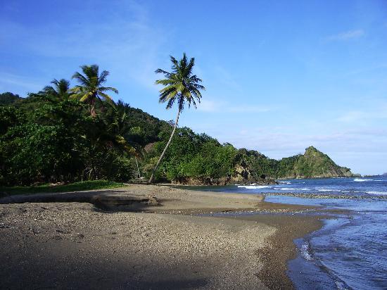 Manta Lodge: The beach