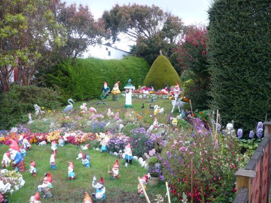 kay mccullums bb reviews falkland islandsstanley tripadvisor - Gnome Garden
