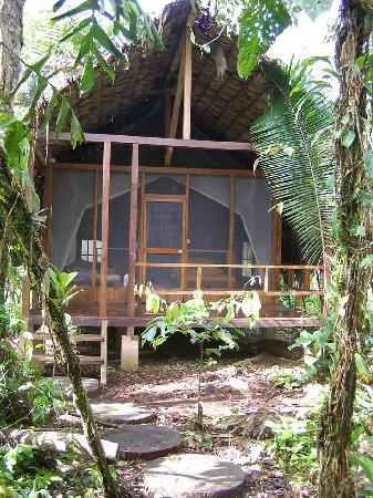 Huaorani Ecolodge: One of the cabins