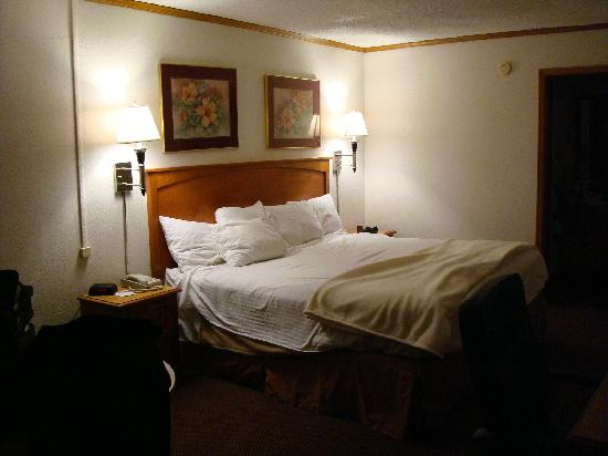 Super 8 Kansas City Airport : The very comfortable king-sized bed