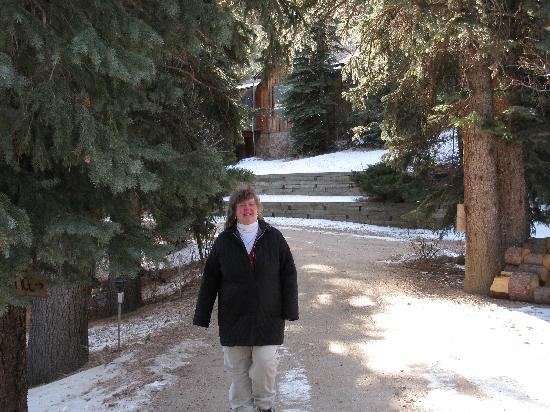 Ponderosa Lodge: A beautiful walk at the Ponderosa on a snowy day!