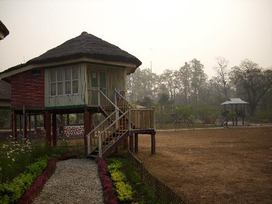 Gorumara National Park, Indien: Unterkunft Gorumara Elephant Camp