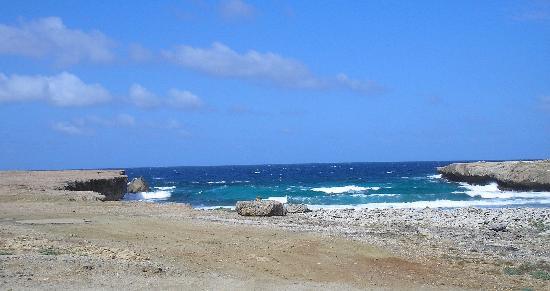 萬豪阿魯巴海洋俱樂部照片