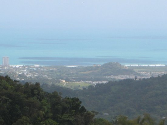 Porto Rico: view from El Yunque