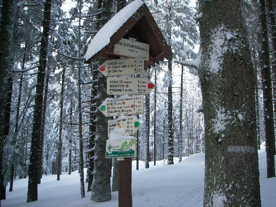 Orea Hotel Spicak: Hiking / Signpost