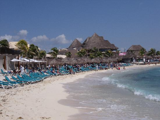 Catalonia Yucatan Beach Playa Del Hotel