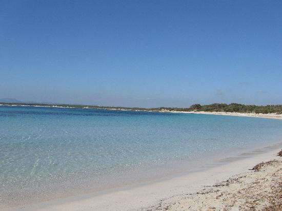 Blau Colonia Sant Jordi Resort & Spa: The beach at Es Trenc - great but a fair hike away