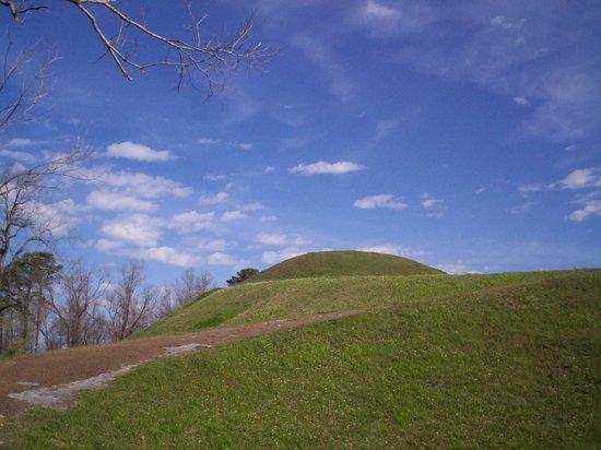Natchez Trace Parkway : Emerald Mound II