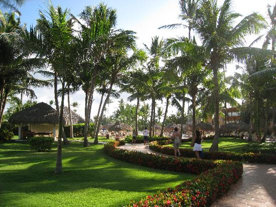 Bellissimi giardini del hotel foto di iberostar - Giardini bellissimi ...