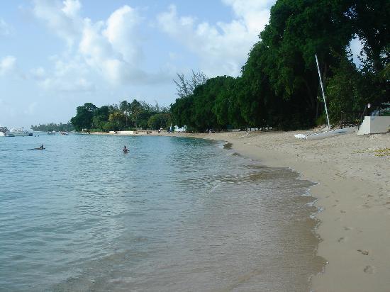 写真Emerald Beach枚